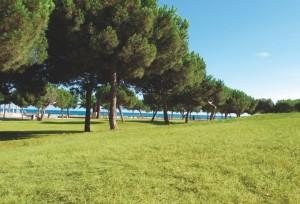 Parc de Ribes Roges, Vilanova i la Geltrú